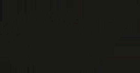 Manateesshirt